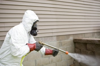 spray for pests